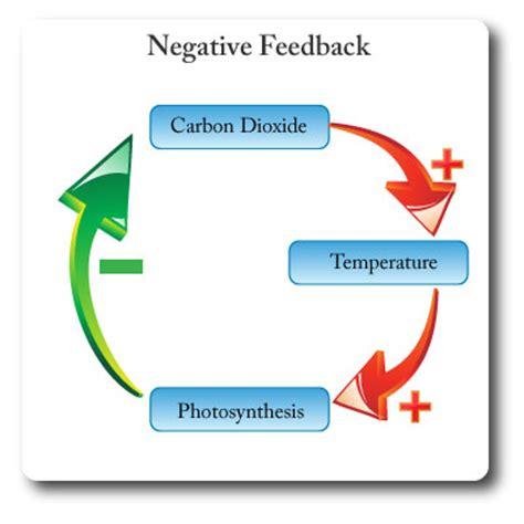 Sample cover letter ecology